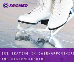Ice Skating in Caernarfonshire and Merionethshire