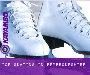 Ice Skating in Pembrokeshire