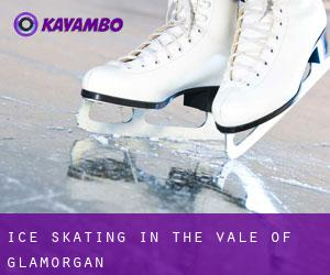 Ice Skating in The Vale of Glamorgan