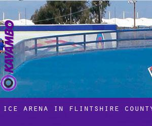 Ice Arena in Flintshire County