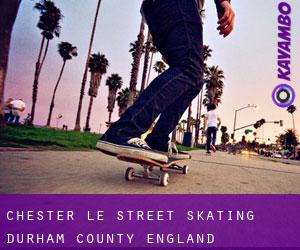 Chester-le-Street skating (Durham County, England)