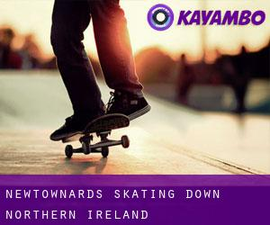 Newtownards skating (Down, Northern Ireland)